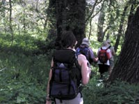 Διεθνές ορειβατικό μονοπάτι Ε6